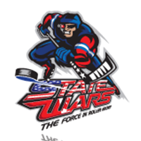 image of stat wars logo